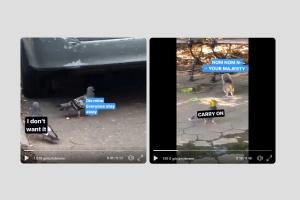 New York sokakları Instagram Hikaye araçlarıyla ile dile geliyor